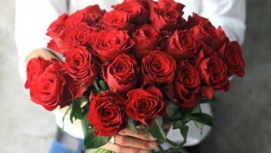تصویر در بهترین گل فروشی های شیراز – آدرس و تلفن