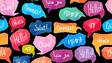 Photo of بهترین دارالترجمه های رسمی شیراز به همراه آدرس و تلفن