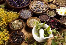تصویر در بهترین مراکز طب سنتی در بوشهر – آدرس و تلفن