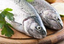 تصویر در لیست ماهی فروشی های بوشهر – آدرس و تلفن