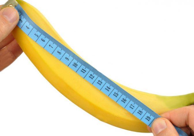 اندازه طبیعی آلت تناسلی مردانه