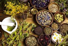 آموزشگاه های طب سنتی در شیراز